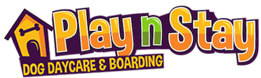 Play N Stay Logo
